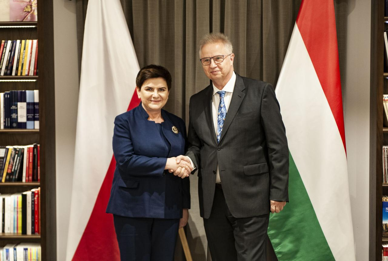 Deputy Prime Minister Beata Szydło on Polish-Hungarian cooperation in the next European Parliament